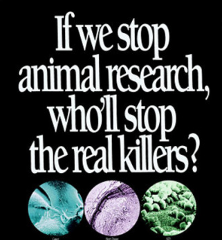 Ethics Medicinal Animal Experimentation Pointless Cruelty Or